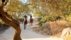 Una passeggiata a cavallo a Dorgali - Horseback riding