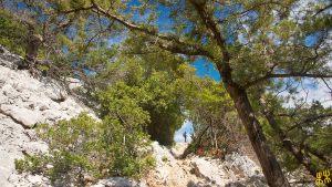 tiscali_escursionismo_Dorgali_FCD6165-bs
